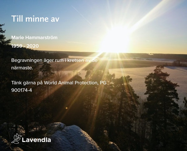 Inbjudningskort till ceremonin för Marie Hammarström